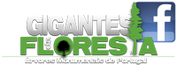 Gigantes da Floresta no Facebook