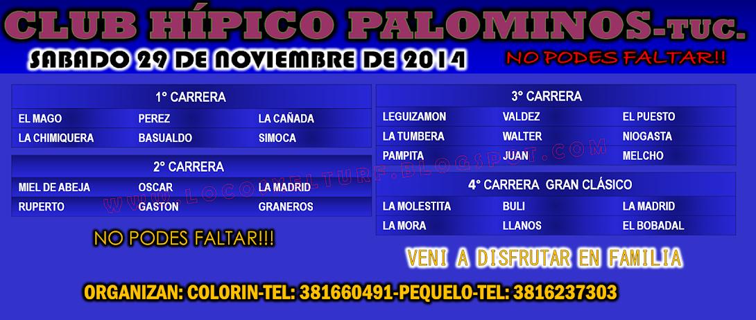 29-11-14-PROG.-HIP. PALOMINOS