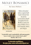 Molly Bonamici: A Novel