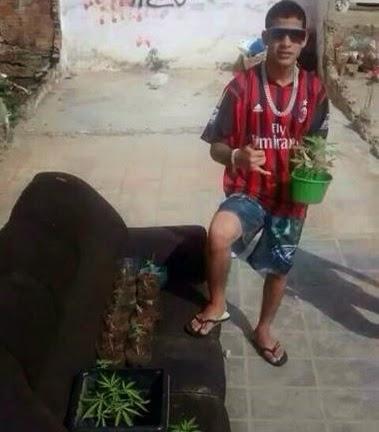 Jovem é preso após postar foto com pés de maconha no Facebook.