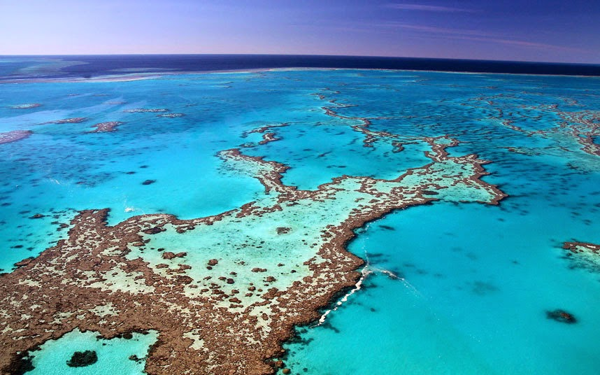 Great Barrier Reef, Australia Rated as one of the seven wonders of the natural world, this World Heritage Site stretches for 2,300 kilometres (1,430 miles) along the Queensland coast – from Bundaberg to the Torres Strait. In addition to being the world's largest coral reef ecosystem, it is also the planet's largest protected marine area, supporting 400 types of coral, 1,500 species of fish and 4,000 types of mollusc, writes Mark Chipperfiled. Telegraph Travel's Australia expert. The Great Barrier Reef: Trip of a Lifetime