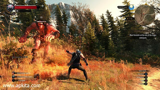 The Witcher 3 Wild Hunt Screenshot 4