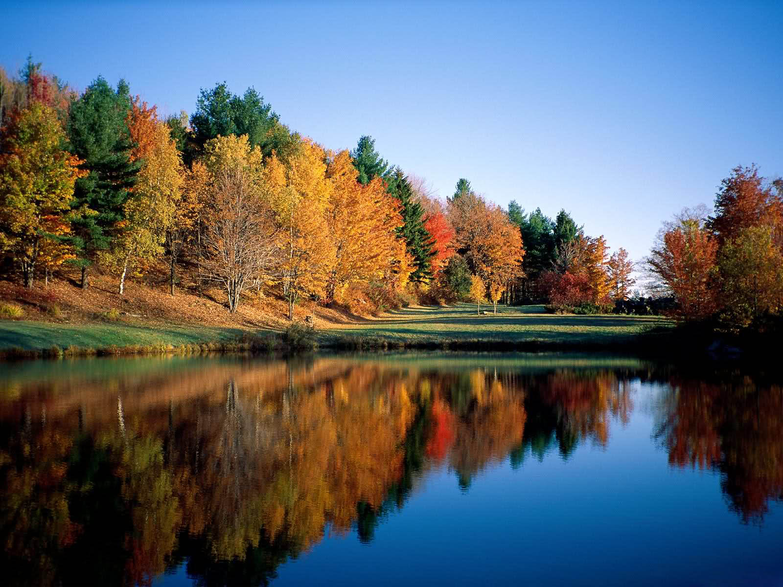 Tag Super Autumn Scenery Wallpapers Backgrounds Paos Images And Pictures For Free