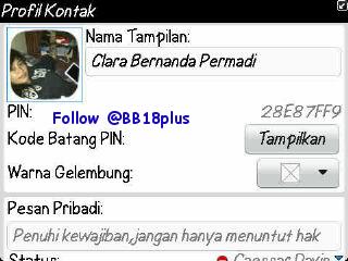 bb18plus disitu juga tempatnya share promote pin bb trus inget juga