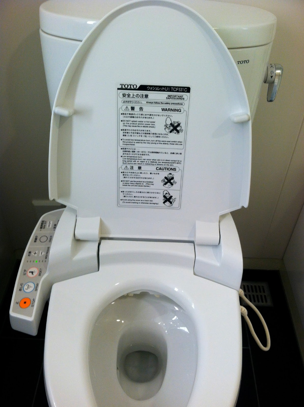 rubin on wry: Japan\'s toilet technology bows to no nation
