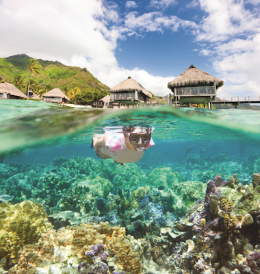 Win a Trip to Bora Bora with THE GAME OF LIFE: CAA Life-side Assistance Edition