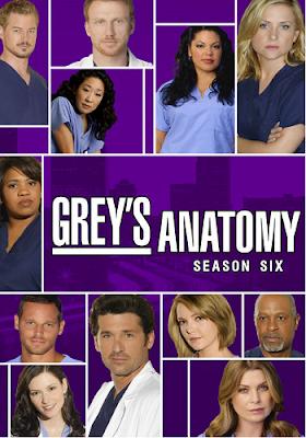 Anatomia de Grey Temporada 6