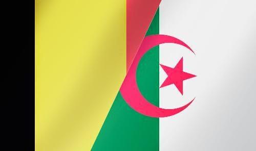 Live Stream Belgien - Algerien