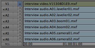 Renaming the individual tracks in a multitrack audio clip.