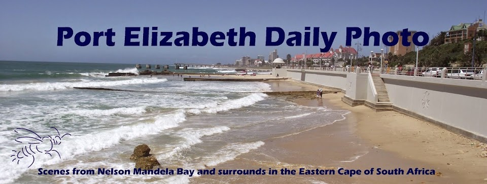 Port Elizabeth Daily Photo