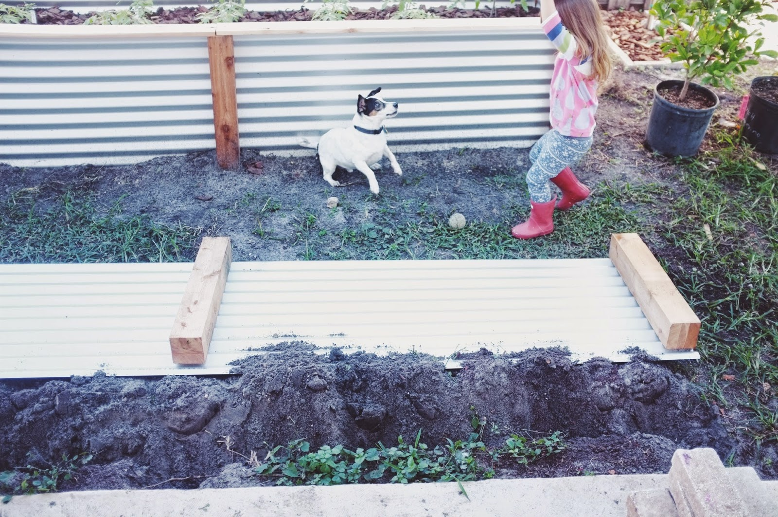 Superb img of ohdeardrea: Our Raised Beds: Easy Metal & Wood Garden Bed How To / DIY with #718041 color and 1600x1062 pixels