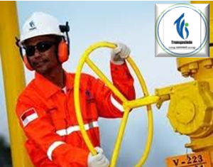 PT Transportasi Gas Indonesia Jobs Recruitment D3 Transgasindo July 2012