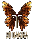 20 DAKKA DZS ZLE | 12.BLM ZLE | SON BLM ZLE