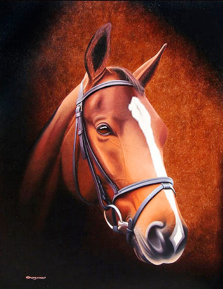 Cuadros pinturas oleos caballos pinturas con luz y sombra leo sobre lienzo - Cabezas animales tela ...