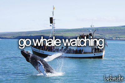Bucket List. Before I Die go whale watching