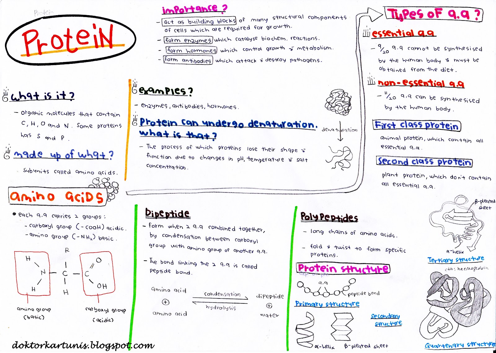 notes biology chapter 1 form 5