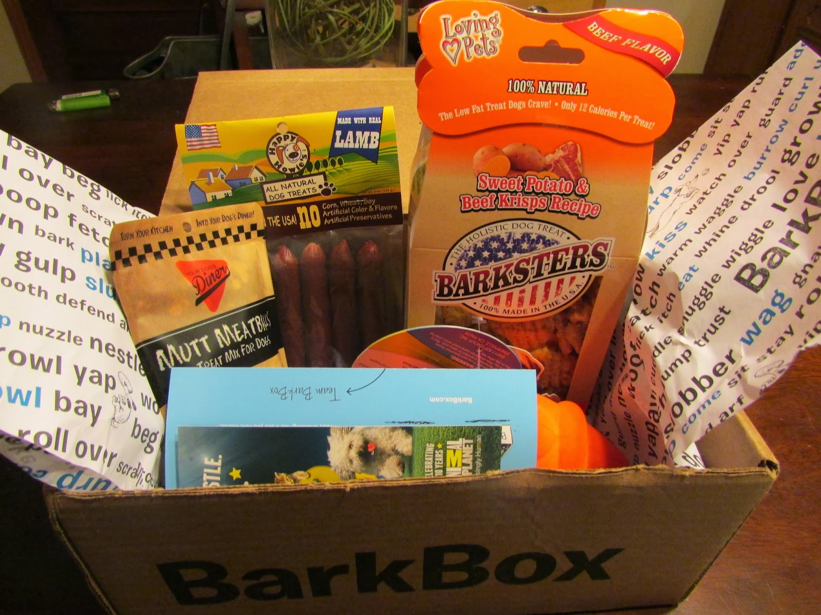 whats in a barkbox, january 2014 barkbox, barkbox review
