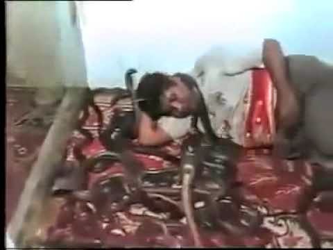 Man From Indian Sleeps With The Most Deadliest Snake's In The World