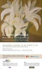 "Próxima Inauguración: ""EL RAMO IMPOSIBLE"" por Mariano Benavente con curaduría de Leila Tschopp."
