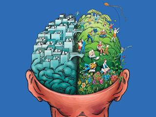 Cada hemisferio cerebral se encarga de funciones distintas.