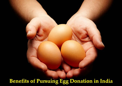 Egg Donation in India
