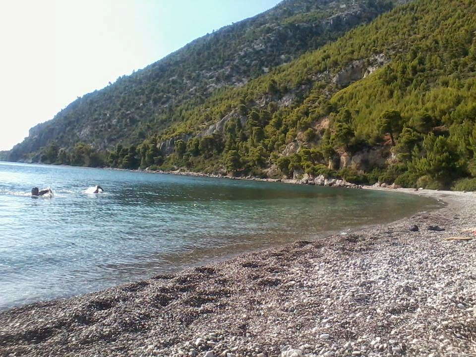 Νεροτριβιά Εύβοιας, θάλασσα και βουνό σε μια μέρα! Χαλκίδα, δάσος όρος Καντήλι, παραλία Δάφνης