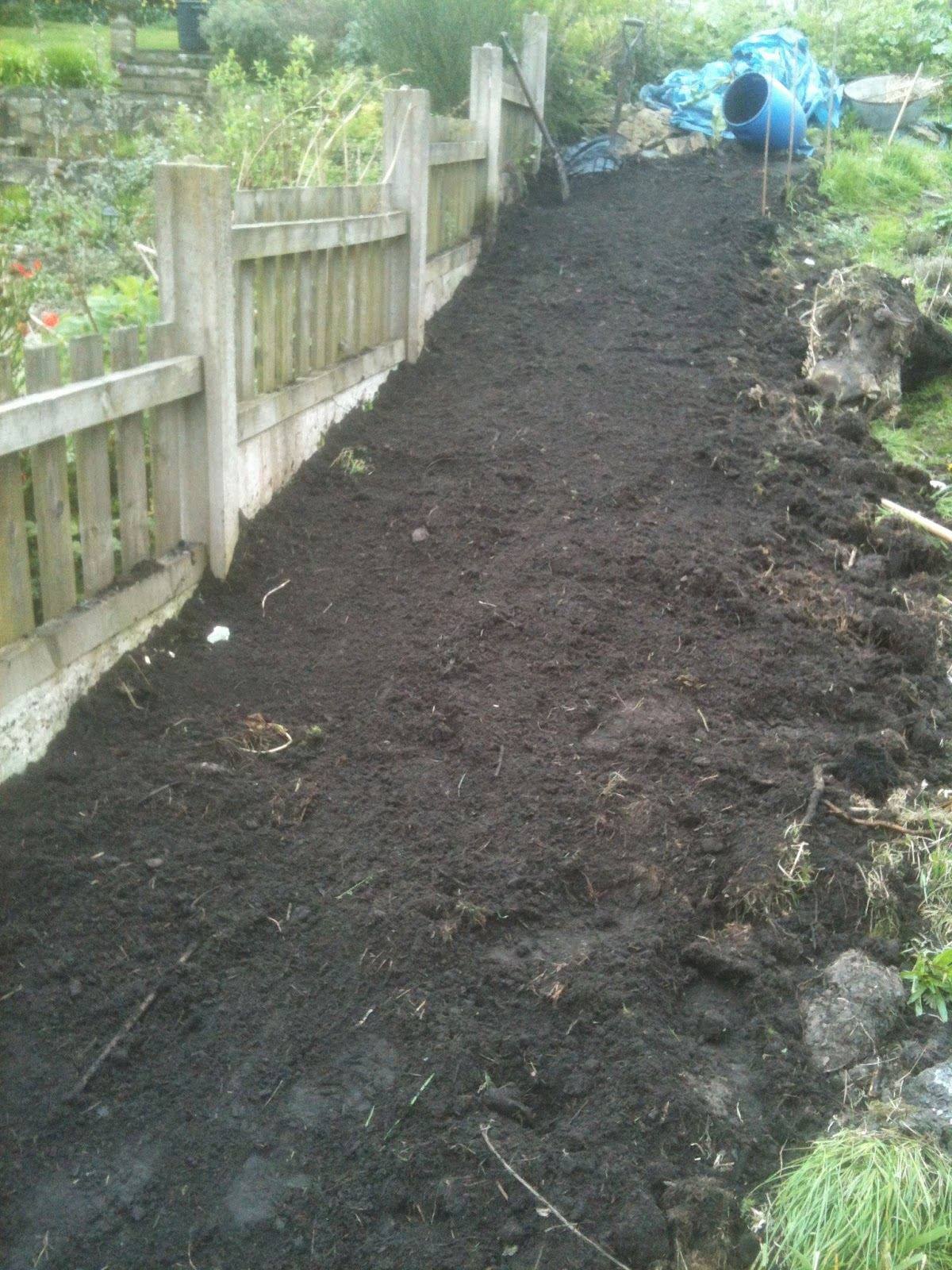 Mulch your soil, don't dig it.
