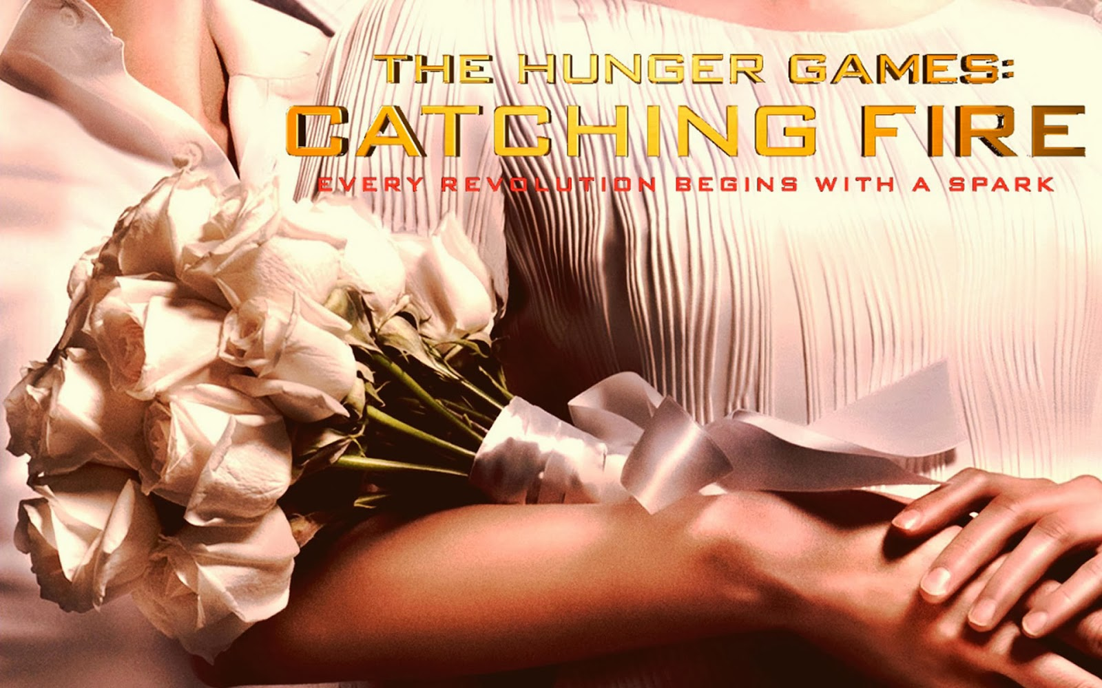 Hunger Games District 12 Reaping