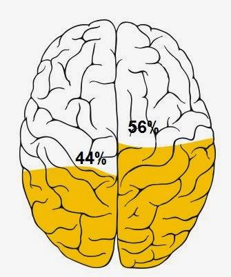 beyninizin hangi tarafı ağır