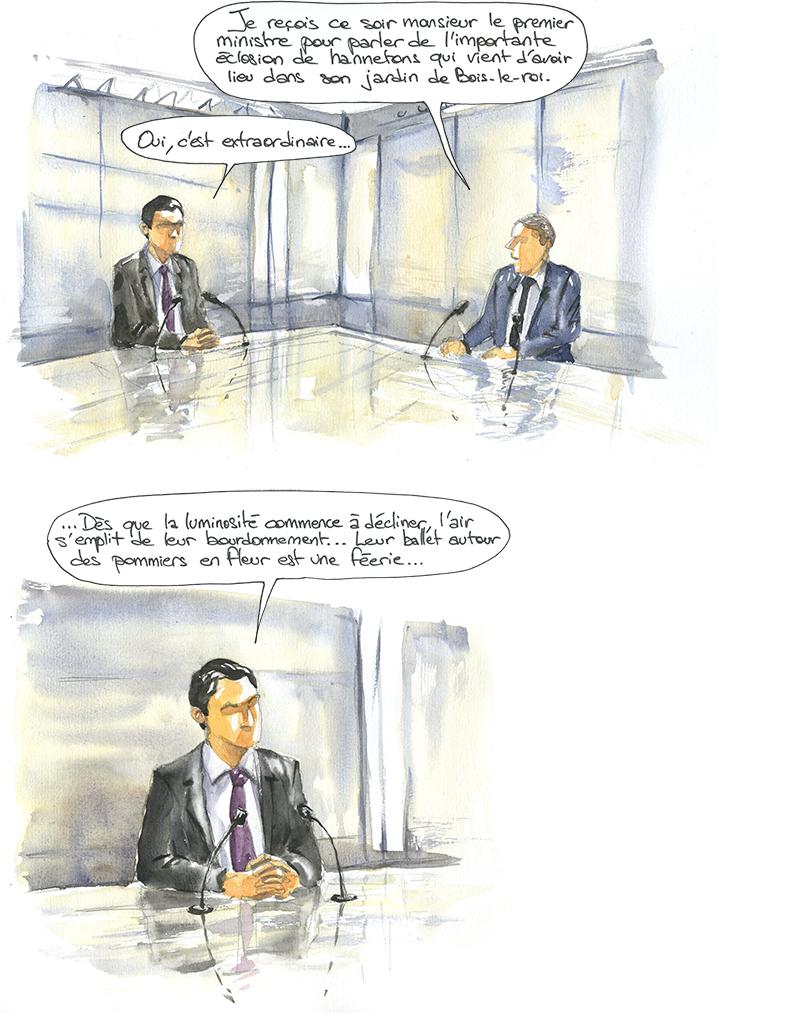 Interview de Manuel Valls à TF1, pour parler d'une éclosion de hannetons