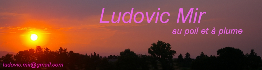 Ludovic Mir