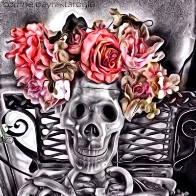 halloween skeleton pic