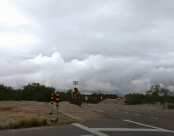Tucson Odile