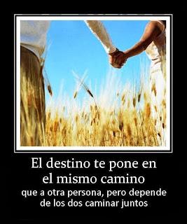 Frases De Amor: El destino Te Pone En El Mismo Camino Que A Otra Persona Pero Depende De los Dos Caminar Juntos