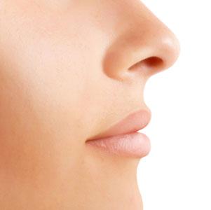 poros de la nariz
