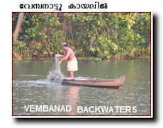 VEMBANAD BACKWATERS