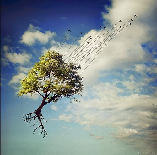 15-Surreal-Photo-Manipulation-Sarolta-Bán-www-designstack-co