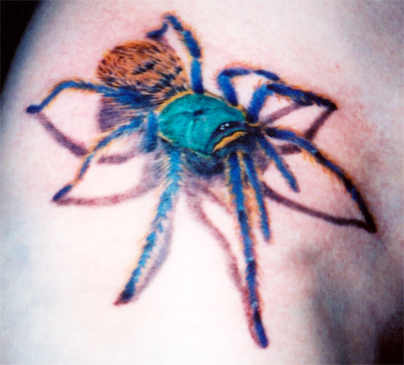 Aranha+spider_tattoo_2_by_nocturnejewel D39oompjpg