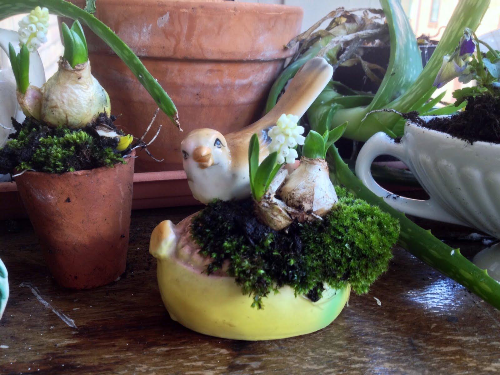 Easter Gardening Fun