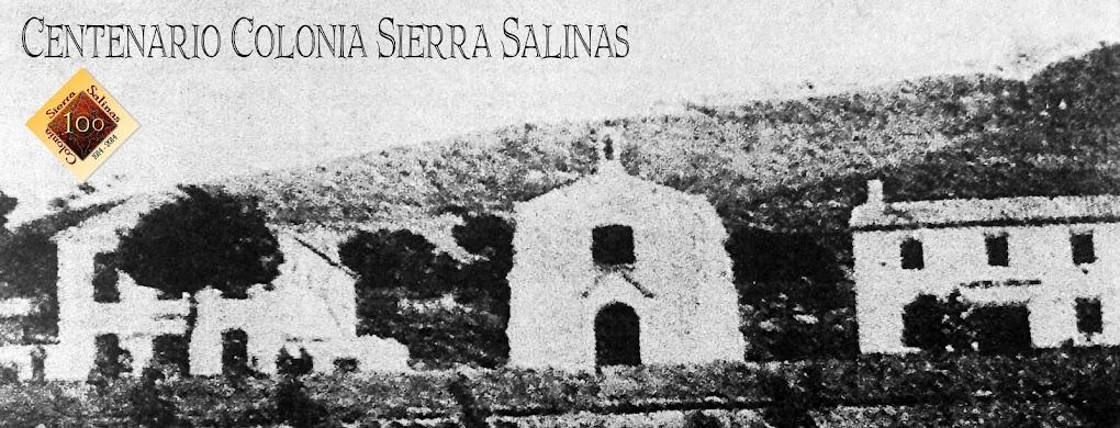 COLONIA SIERRA SALINAS
