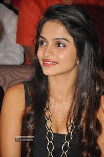 Actress-Sheena-Shahabadi-Stills-at-Nuvve-Naa-Bangaram-Movie-Audio-Launch