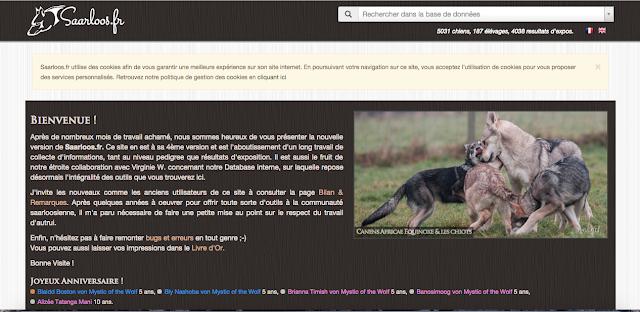 canens africae blog
