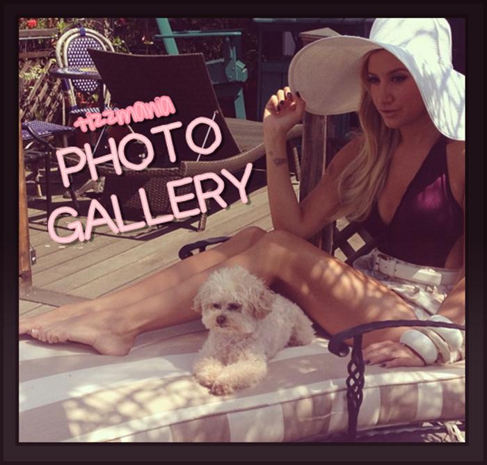 Tizzmania Photo Gallery
