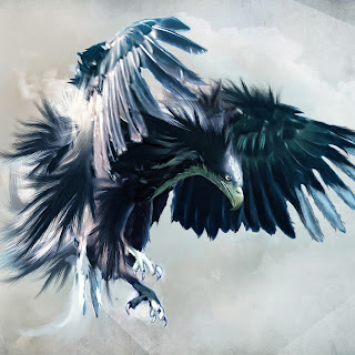 Ipad eagle wallpaper