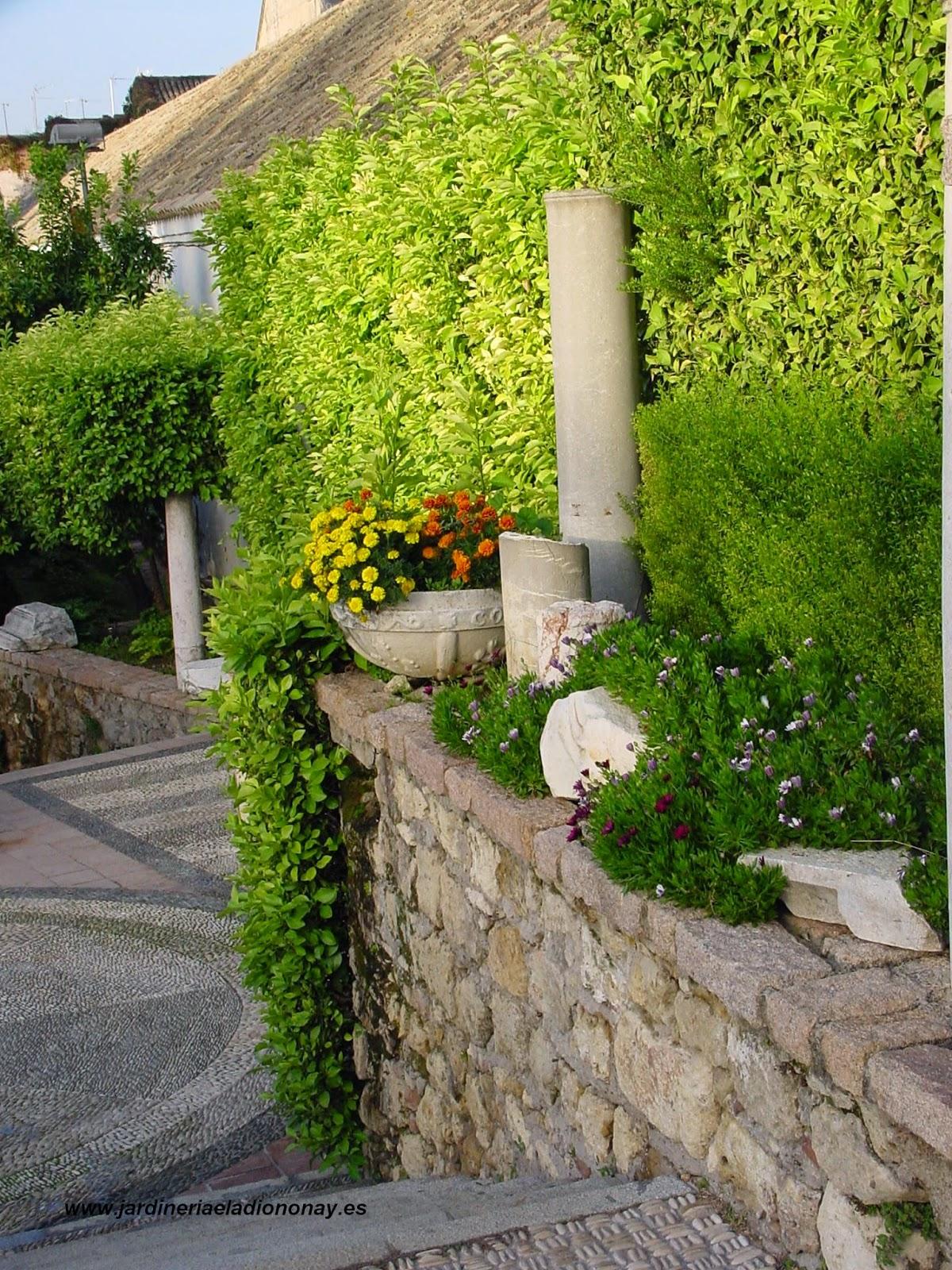 Jardineria eladio nonay alc zar de los reyes cristianos - Jardineria eladio nonay ...