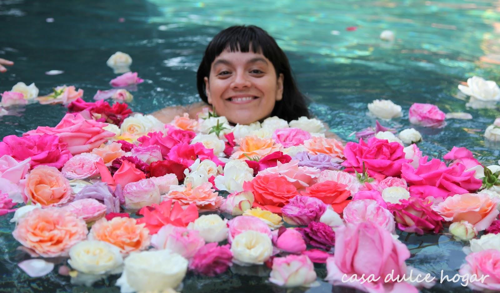 Casa dulce hogar for Cancion jardin de rosas