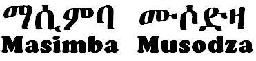 Masimba Musodza