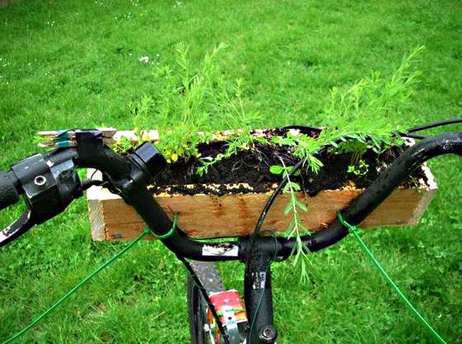 Mobile Garden on bicycle