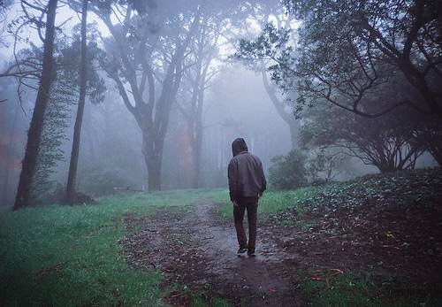 A man walking alone in the forest
