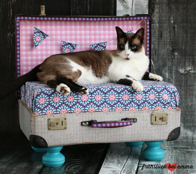 Katzenbett aus Surprise Stoffen
